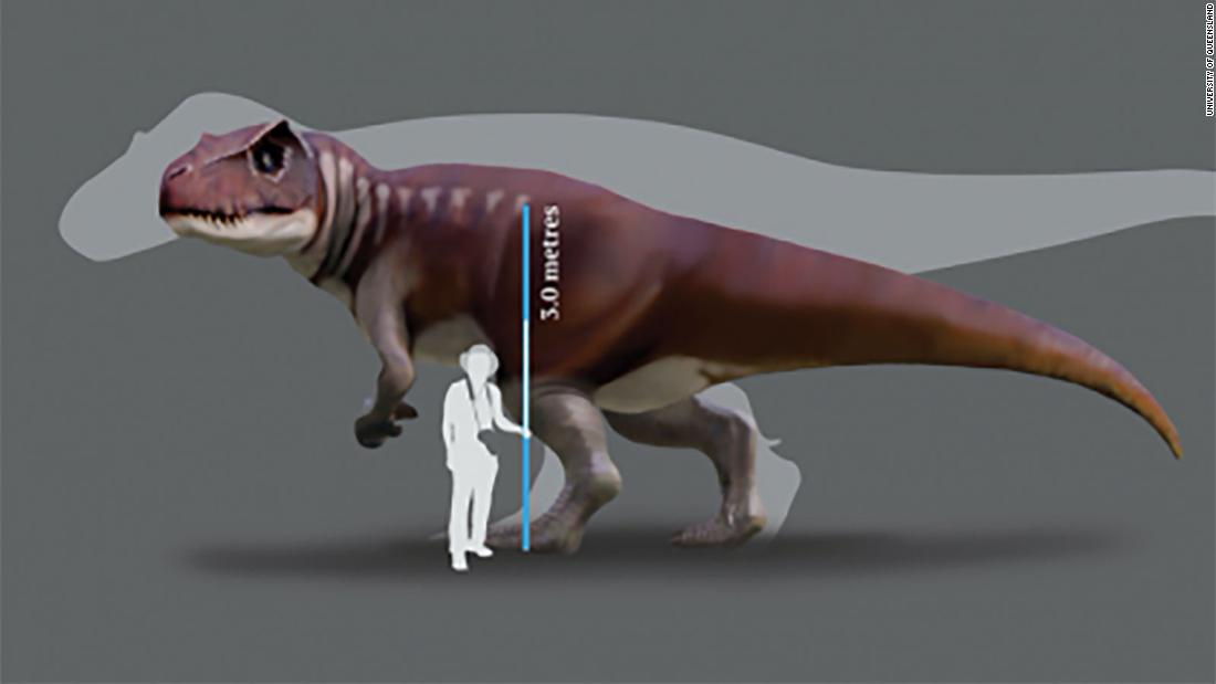Huge carnivorous dinosaurs lived in Australia, scientists reveal