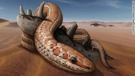 Snakes had hind legs 70 million years before they lost them, new fossils have shown