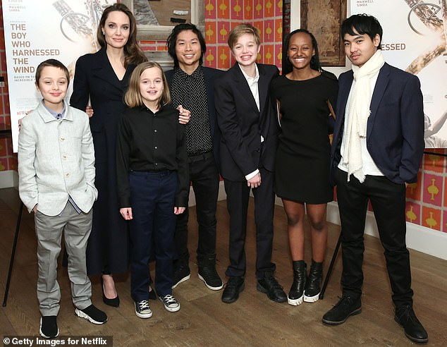 Proud parents: The exes began dating in 2005, before they were married from 2014 to 2016, sharing sons Maddox, 18, Pax, 16, John, 14, Knox, 12, and daughters Zahara, 15, and Vivienne, 12 (pictured in February, 2019)