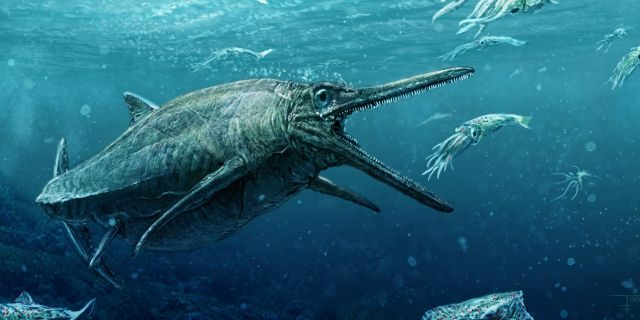 File photo: An artist's rendering of the ichthyosaur.