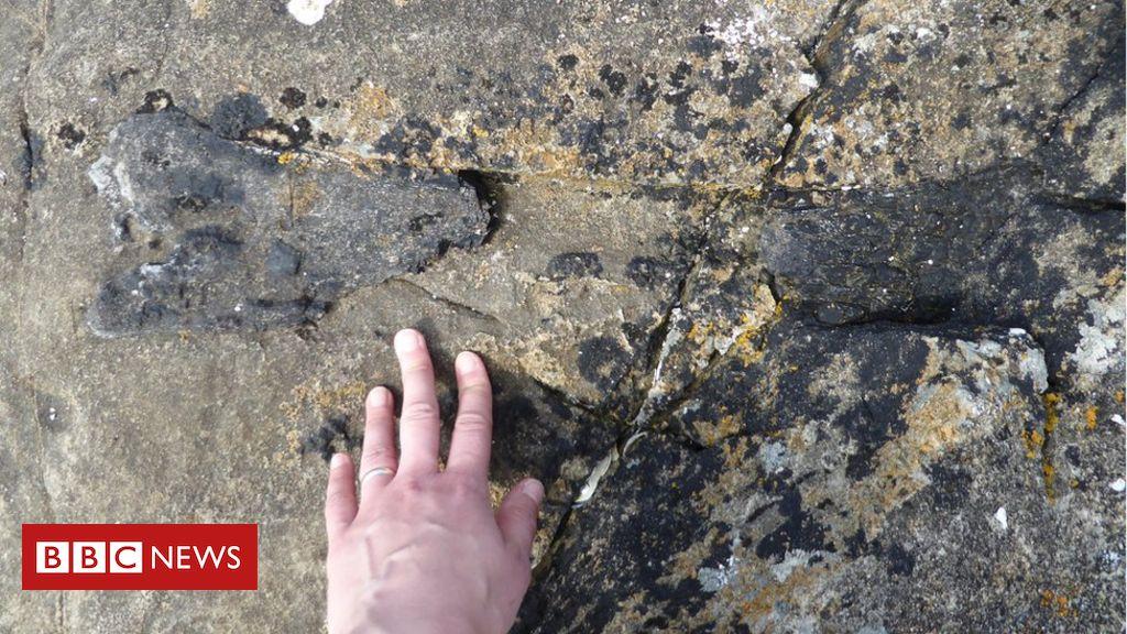 Eigg seashore runner stumbles on dinosaur bone