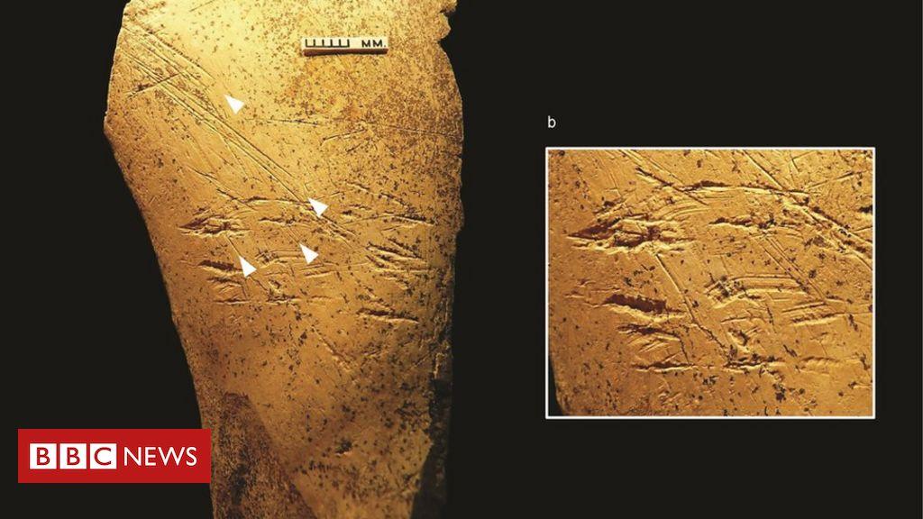 Europe's earliest bone tools identified in Britain