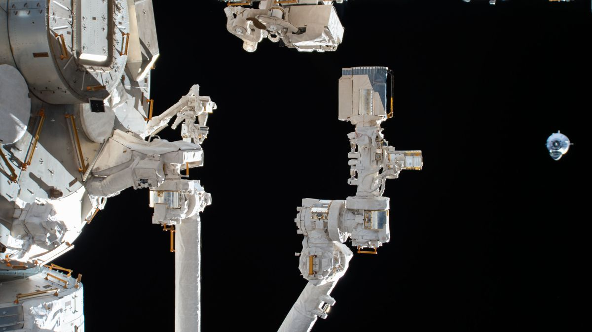 Professional crews and non-public astronauts will strengthen Global Space Station's science