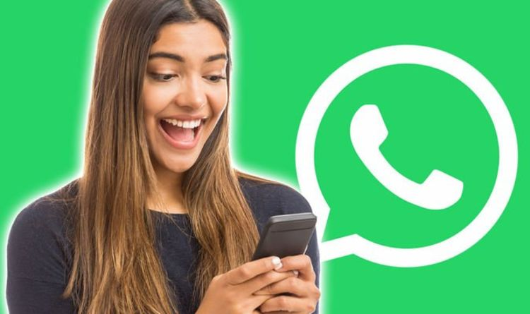 WhatsApp update could bring massive Iphone attribute to Android equipment