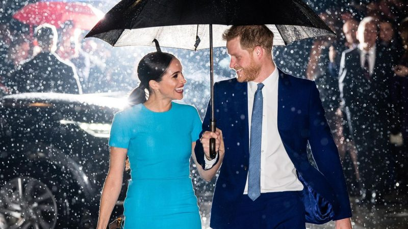 Trump says he is not a fan of Meghan Markle, Prince Harry will need a lot of luck