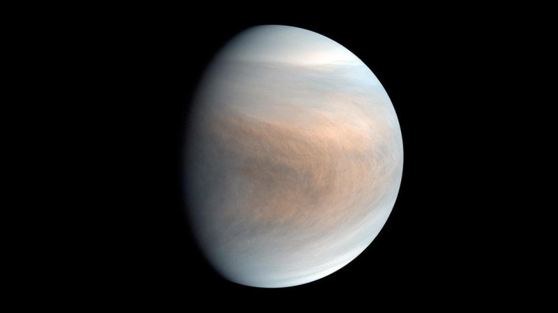 Astronomers are finding a possible sign of life on Venus