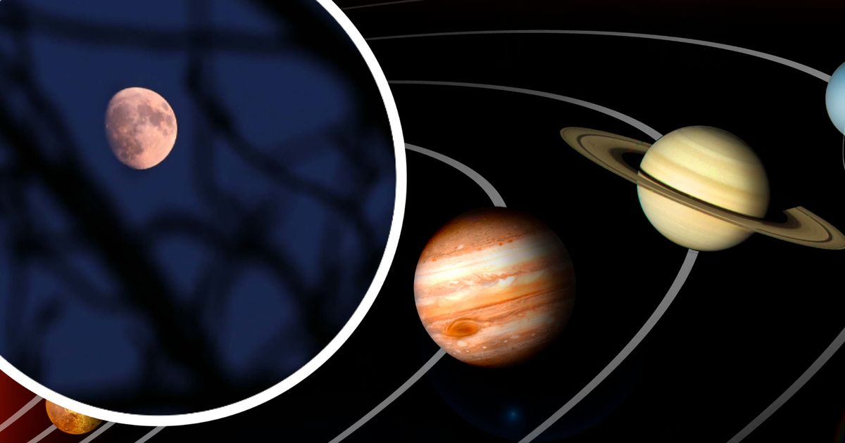 Jupiter and Saturn make a triangle with the moon - the meteorological bureau forecast and when to see them
