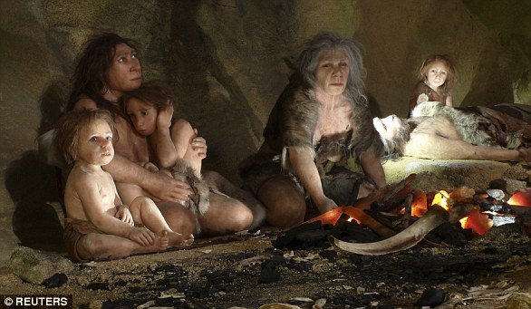 Neanderthals were a close species to humans but not a direct ancestor - the two species separated from a common ancestor - that perished about 50,000 years ago. Pictured is an exhibition of the Neanderthal Museum