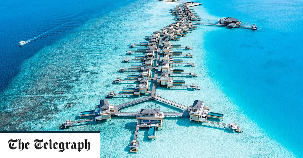 Booking holidays in the Maldives and the Canary Islands remains 'terribly complicated'