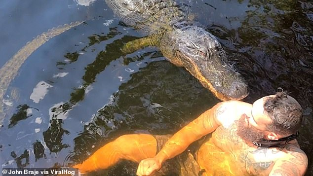 John Bray was a Florida man swimming with a 13-foot-long crocodile in the Everglades when the massive predator bites its shoulder