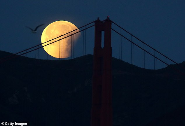 Legend has it that ghosts and spirits are most active on Halloween, but these ghoul entities aren't the only things that will release on October 31 - the rare blue moon is also set to rise on the same day. Pictured is a blue moon taken in 2018 hanging over San Francisco, California