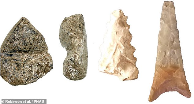 Researchers also found evidence of other societal activities in the cave - specifically, projectile points (left) and arrow shaft straighteners (right) that indicate the manufacture and retrofitting of weapons in preparation for hunting.