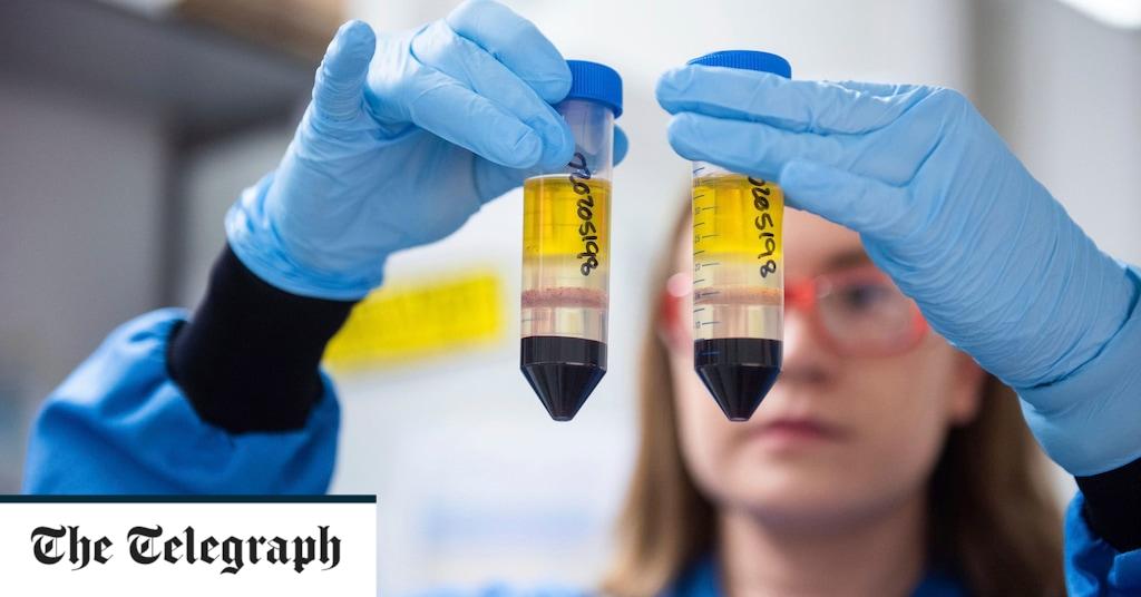 FTSE Index Rises as Vaccine Optimism Strengthens Markets – Live Updates