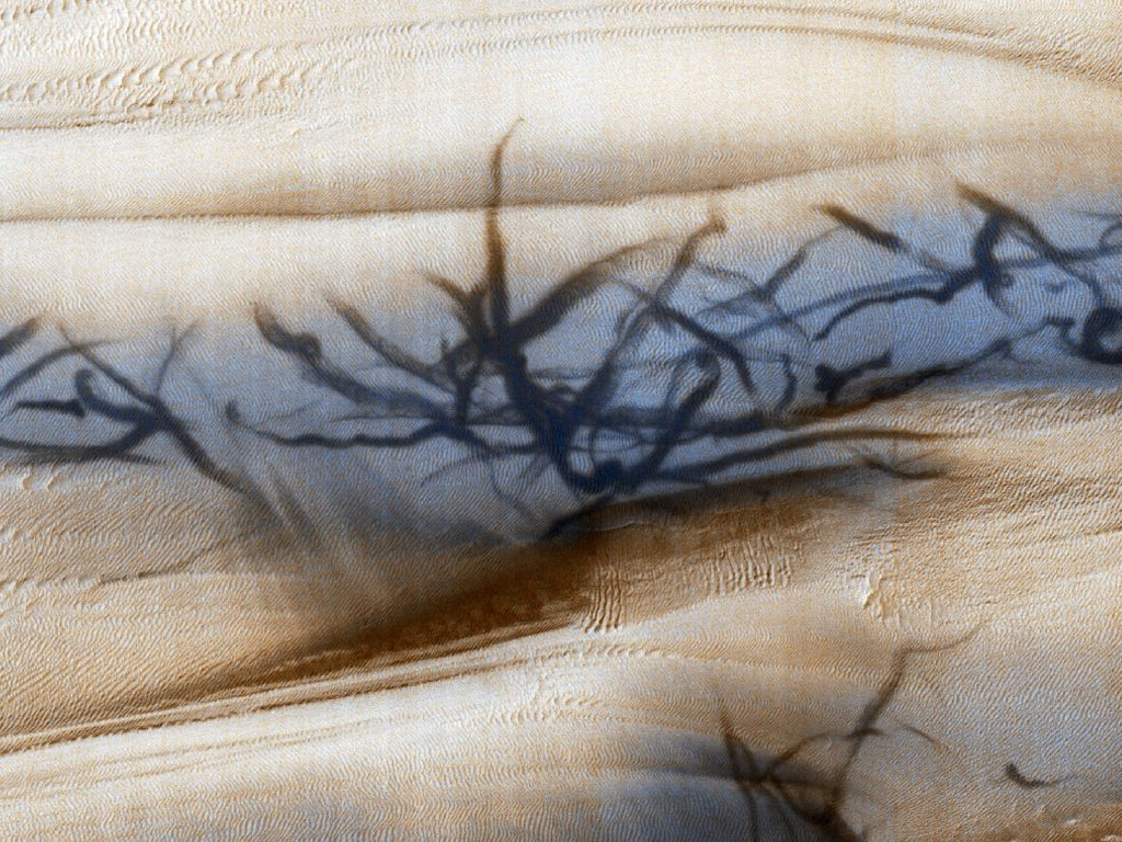 Dust devil tracks pictured on the dunes of the Galle Crater on Mars