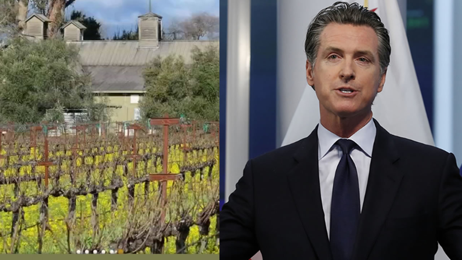Nearly $ 3 million earmarked for small businesses amid the pandemic has gone to companies founded by Gov. Gavin Newsom, according to the data