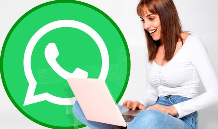 WhatsApp Web can support video calls just in time for Christmas