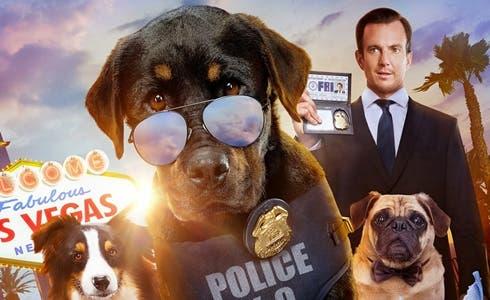 """TV programs tonight, Wednesday, January 6, 2021. on Rai2 on TV 1, """"Show Dogs – Let's go the scene"""" voiced by Cristiano Malgoglio, Valeria Marini and Barbara Dorso"""