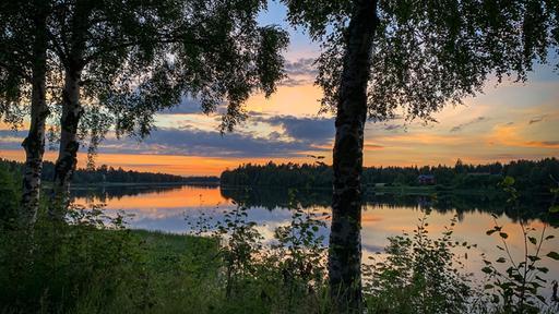 Finland: Climate protection in miniature    tagesschau.de