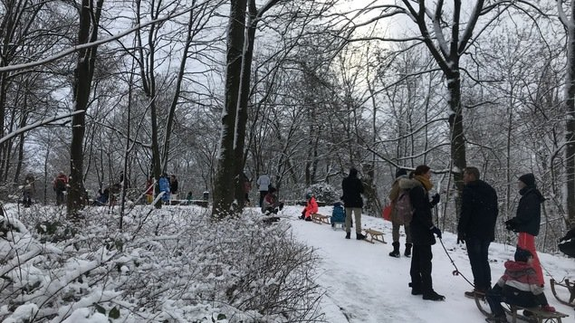 Snow in the park, slippery roads: early winter in Berlin – queuing in front of a toboggan run – Berlin