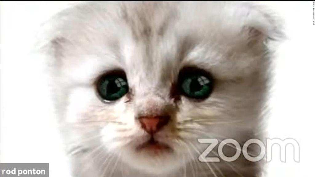 Shows with virtual screenshot filter at zoom