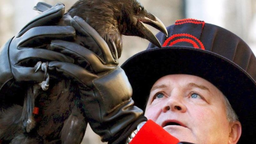 The Tower of London is losing a crow