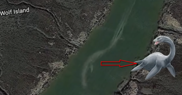 Giant sea monsters mistakenly recorded by Google Earth, looks absolutely amazing!