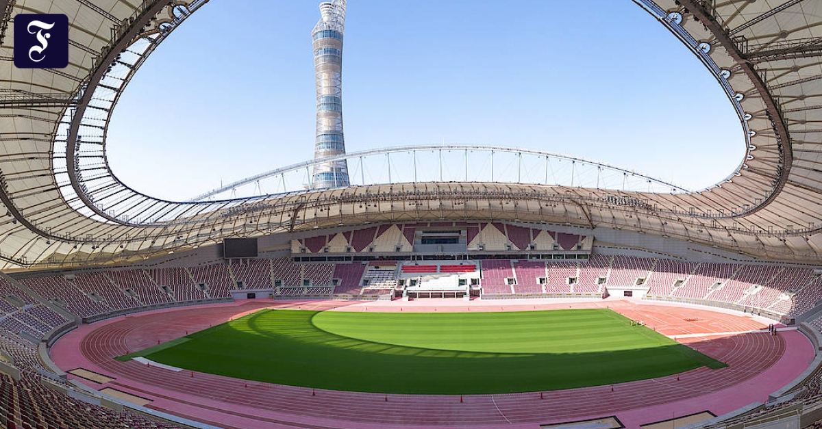 Grass for FIFA World Cup 2022 in Qatar: The Netherlands does not advance