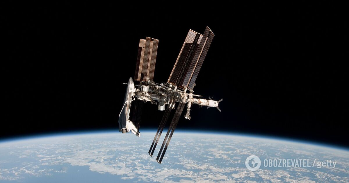 Previously unknown living creatures found on the International Space Station    Science