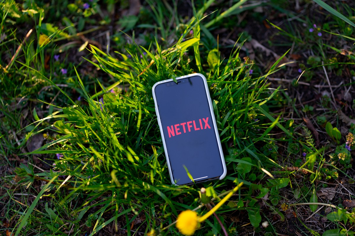 Apple really took care of Netflix in-app subscriptions