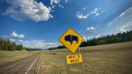 A sign warning the American bison crossing near the northern edge of the Grand Canyon National Park, July 17, 2020 (Photo by Eric Berdat / AFP)
