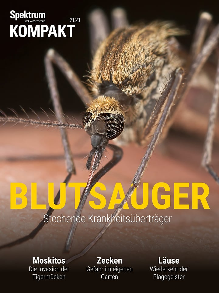 Spectrum Agreement: Vampires - carriers of stinging diseases