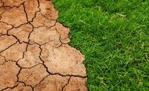 Climate Change: New Financial Risks According to Central Banks