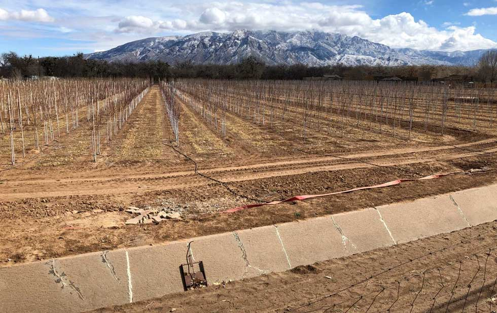 A severe drought ravages the western United States