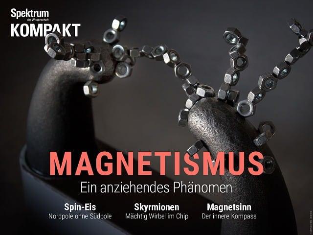 Spectrum Accord: Magnetism - an attractive phenomenon