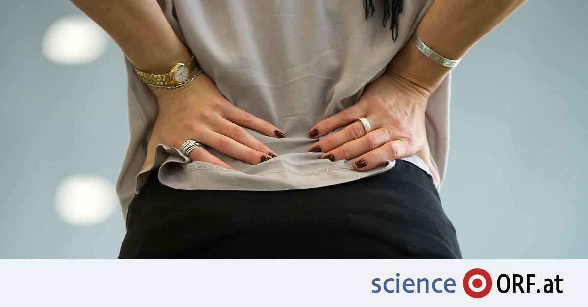Treatment: stem cell injection against back pain – Science.ORF.at