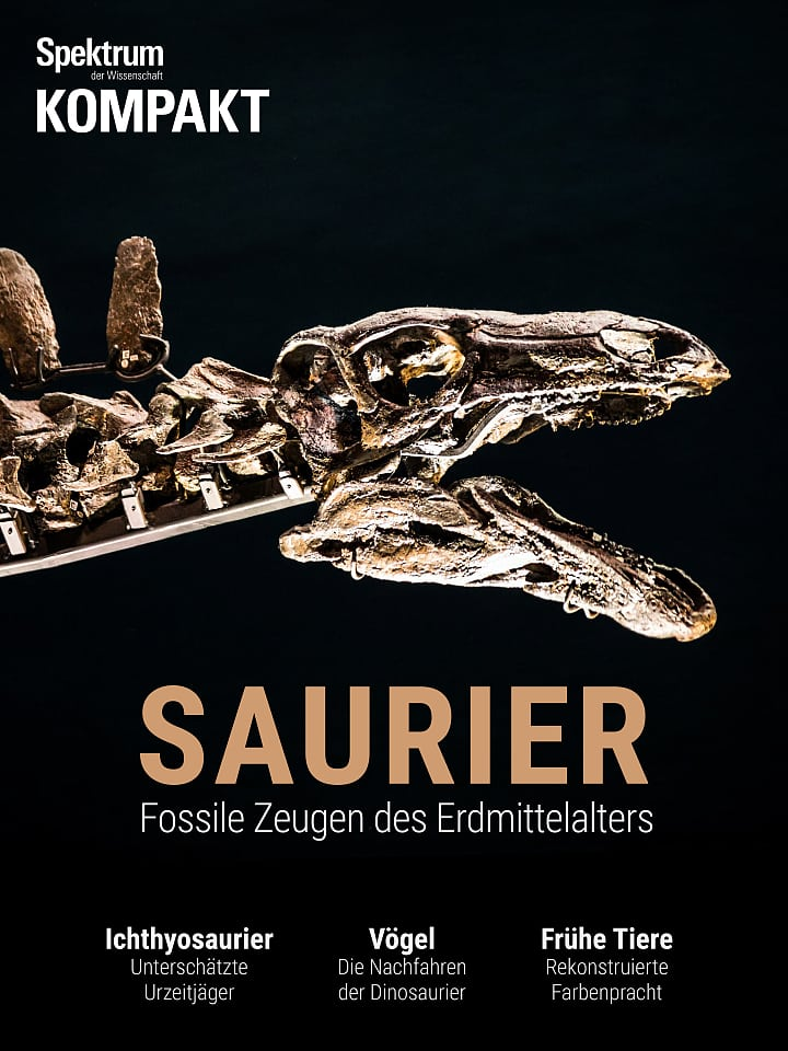 Spectrum Agreement: Saurians - Witnesses of Medieval Fossils