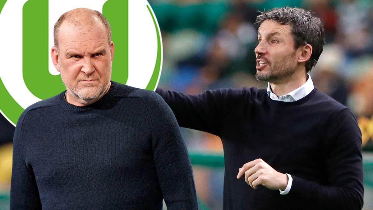 Schmadtek, president of Wolfsburg: Van Bommel has more experience than you think