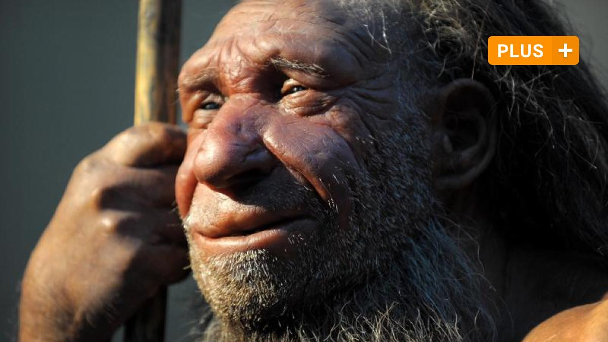 """Science: Are We Closer To """"Dragon Man"""" Than Neanderthals?"""