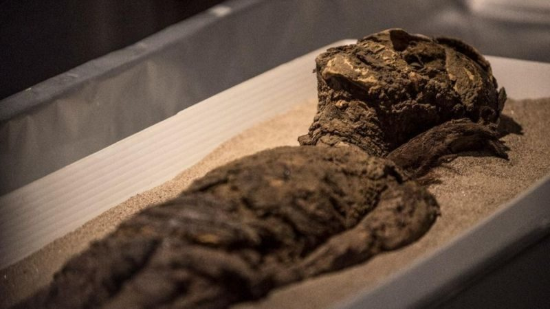 The amazing ancient civilization that mummified the dead 2000 years before the Egyptians |  science and health