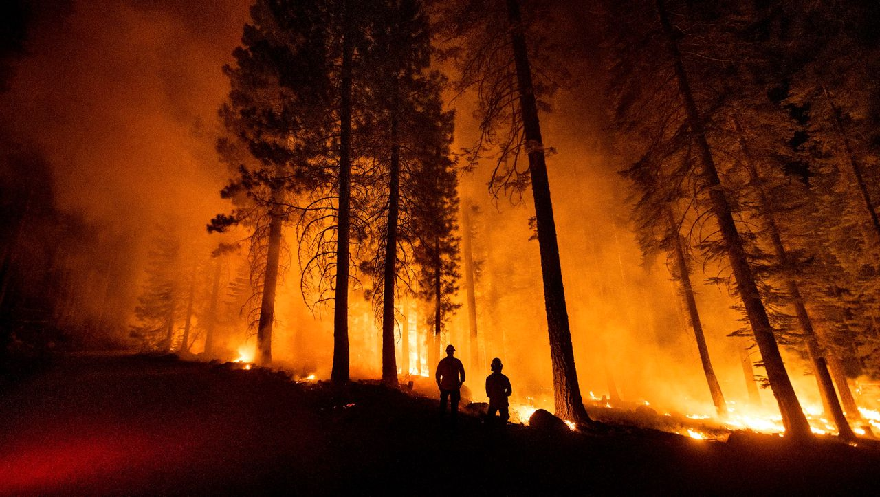 Wildfires in Turkey, Greece and California: a permanent state of emergency