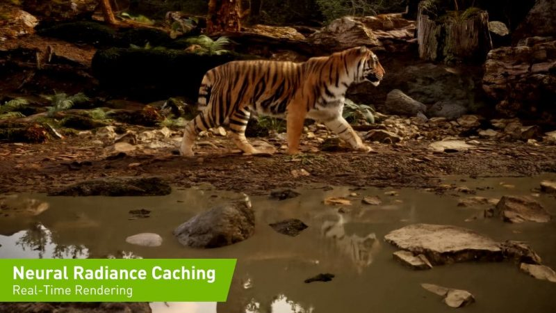 Neural Radiance Caching de Nvidia