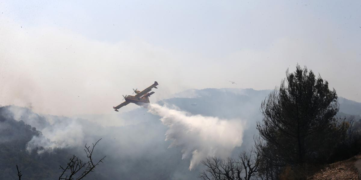 Algeria separates from Morocco after forest fires