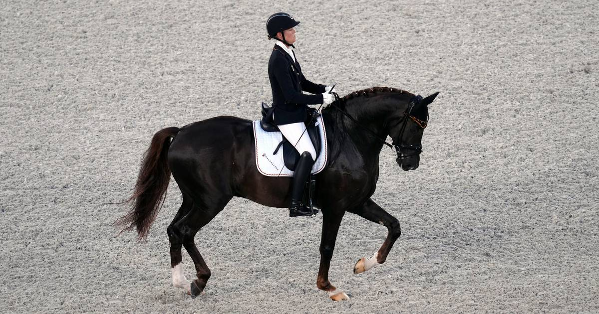 Regen Mispelkamp, Gildern dressage rider, wins bronze in Tokyo