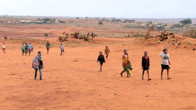 Перший у світі голод через зміни клімату може виникнути на Мадагаскарі - 24 Канал