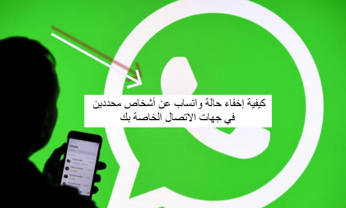 How to hide WhatsApp status from specific people in your contacts