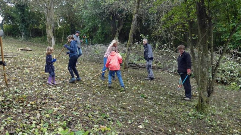 Orchard meadow now provides space for biodiversity - Adelsheim