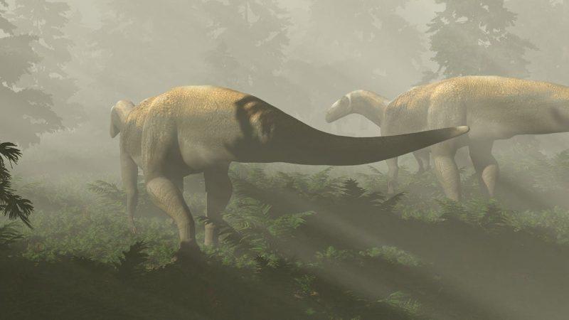 Paleontology: The Giant Predatory Dinosaur Vegetarian
